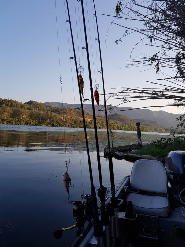 Sumy Rio Ebro