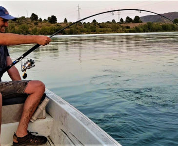 Wedkarstwo - Rio Ebro