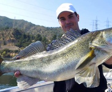 Wedkarstwo Sumy RIo Ebro