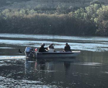 Wedkarstwo Sumy RIo Ebro - 5